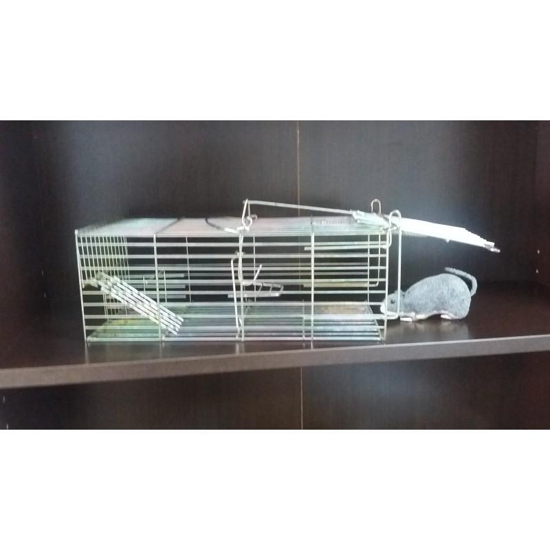 Trampa Multicaptura Metalica Rata