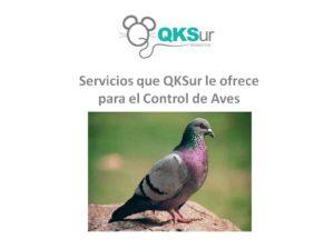Enlace para Guía técnica aves en web